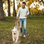 Garde d'animaux domestiques: la solution pour les départs en vacances